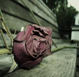 Sad love (A)