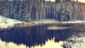 painting-lake-snow-forest-and-top-459532